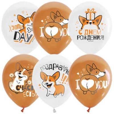 """Латексные шарики с надписью """"С днем рождения! Корги."""""""